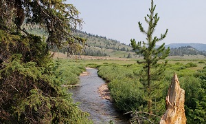 Gros Ventre Wilderness in Wyoming